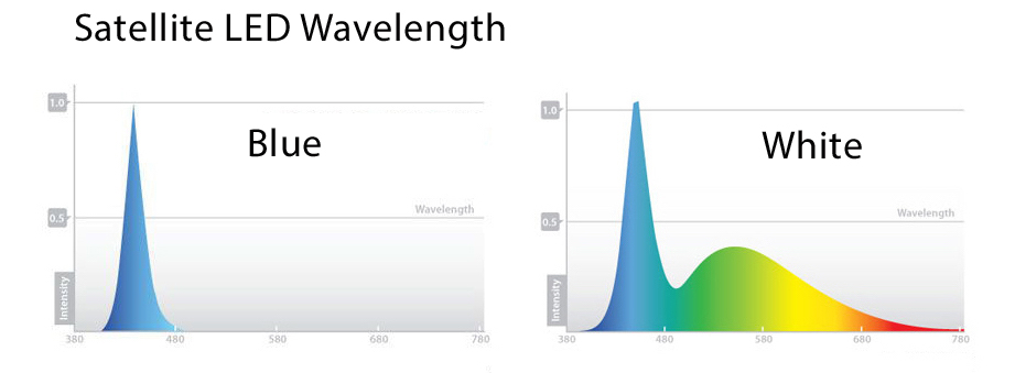 How Much Par And What Wavelength Do The Satellite Led